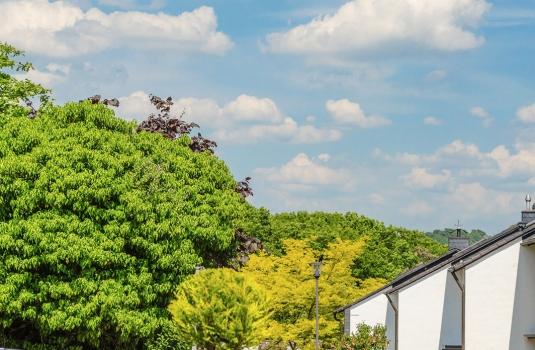 Häuser am Grünen